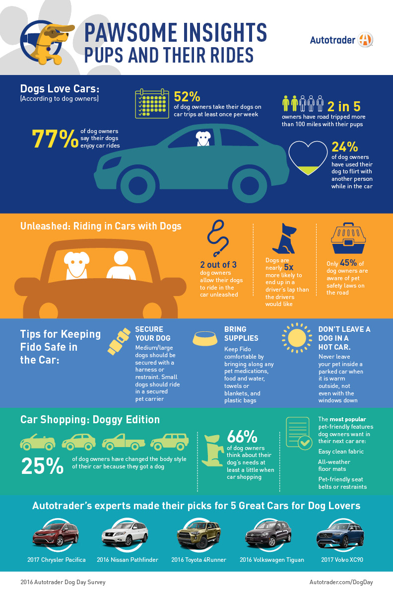 Canine Companions Matter when Buying a Car - Aug 26, 2016