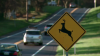 Deer crossing signs and deer near the road
