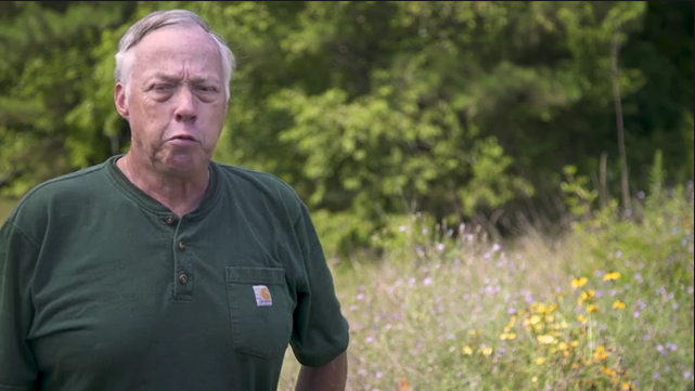 Interview with Bob Glennon - Private Lands Biologist, Virginia Tech's Conservation Management Institute - ACP Pollinator Habi