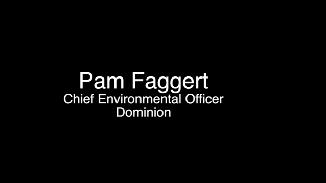 Interview with Pam Faggert and Cathy Taylor - Dominion Energy Environmental Management