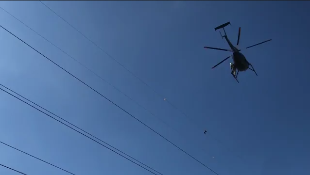 Dominion Energy crews rescue a seagull stuck on a transmission line.