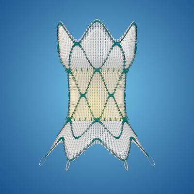 Medtronic Harmony™ Transcatheter Pulmonary Valve (TPV)
