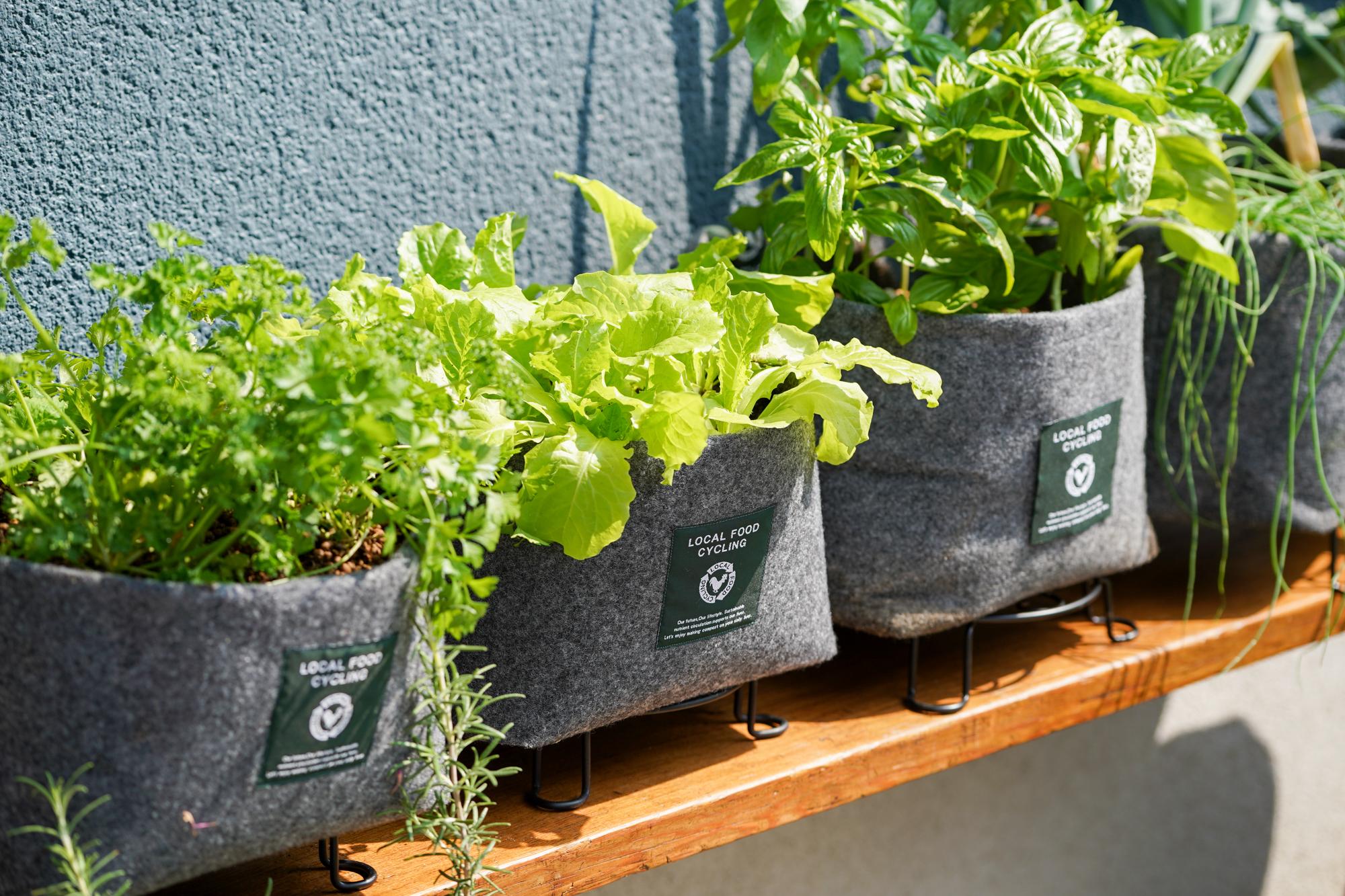 繰り返し使えるトートバッグにコンポスト(堆肥)を入れた都市型コンポスト
