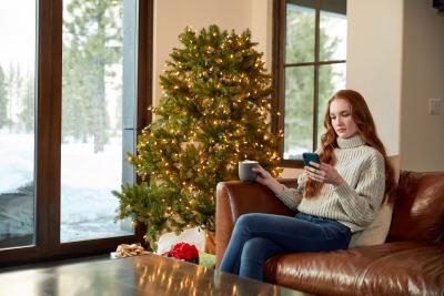 PayPal Weihnachten sicher online shoppen